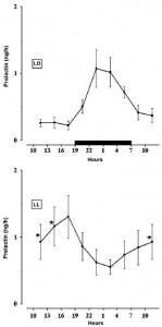 prolactin and light