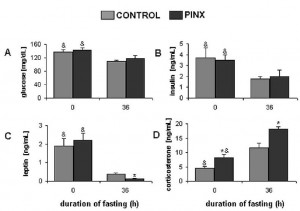 fasting leptin and cortisol