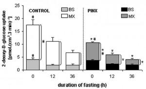 glucose uptake
