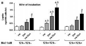 insulin dex melatonin