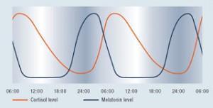 melatonin and cortisol