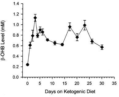 shortening-based ketogenic diet
