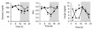 High protein metabolism