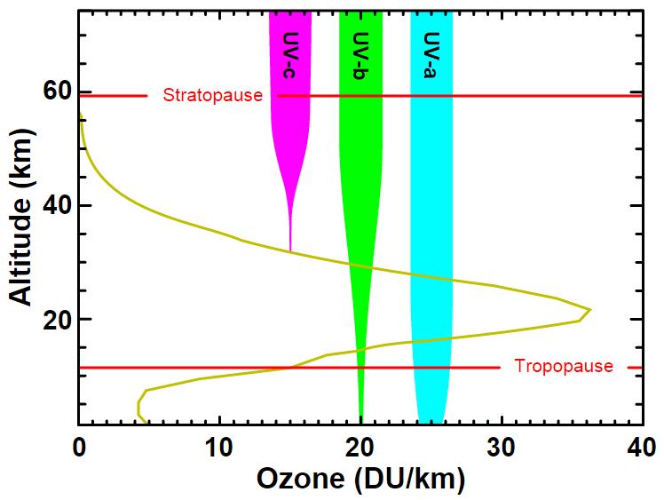 UV rays that reach Earth