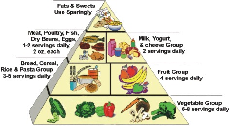Prader-Willi Food Pyramid. Wait, wut? O_o