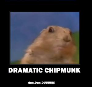 dramatic-chipmunk
