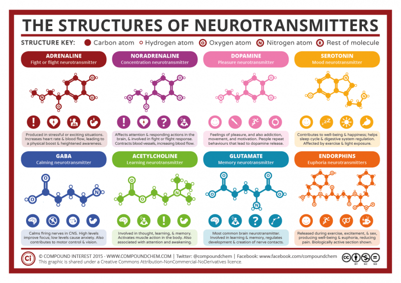 Chemical Structures of Neurotransmitters