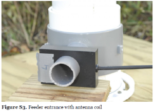 feeder-entrance-with-antenna