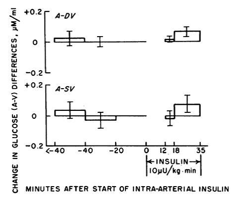 glucose on 10uU