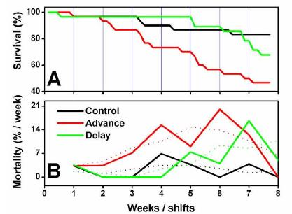 phase shifts and mortality