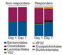 gut microbes days 1 and 7